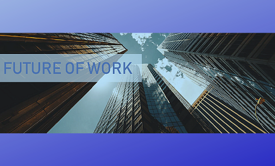 The future of work : access to the global research study made by OIGP in 28 countries
